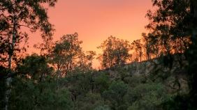 Sunrise - Carnarvon Gorge